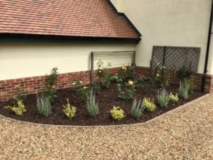Gravel drive and shrub border planting