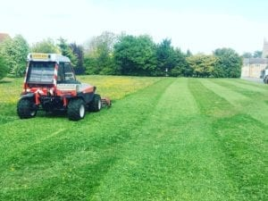 Meadow grass cutting